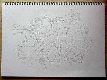 2013年7月27日*色鉛筆画、途中経過。。。