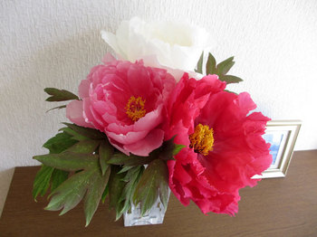 2013年5月2日*豪華な牡丹の花